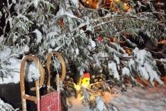 winter_1-1